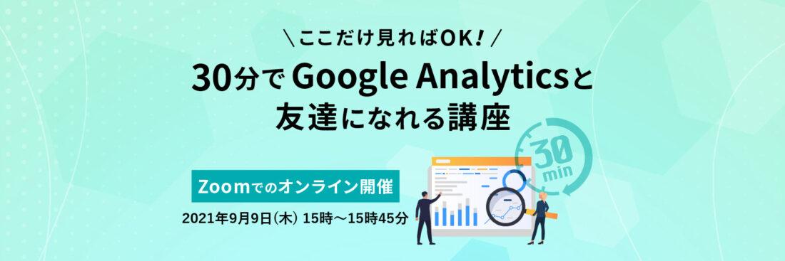 ここだけ見ればOK!30分でGoogleAnalyticsと友達になれる講座